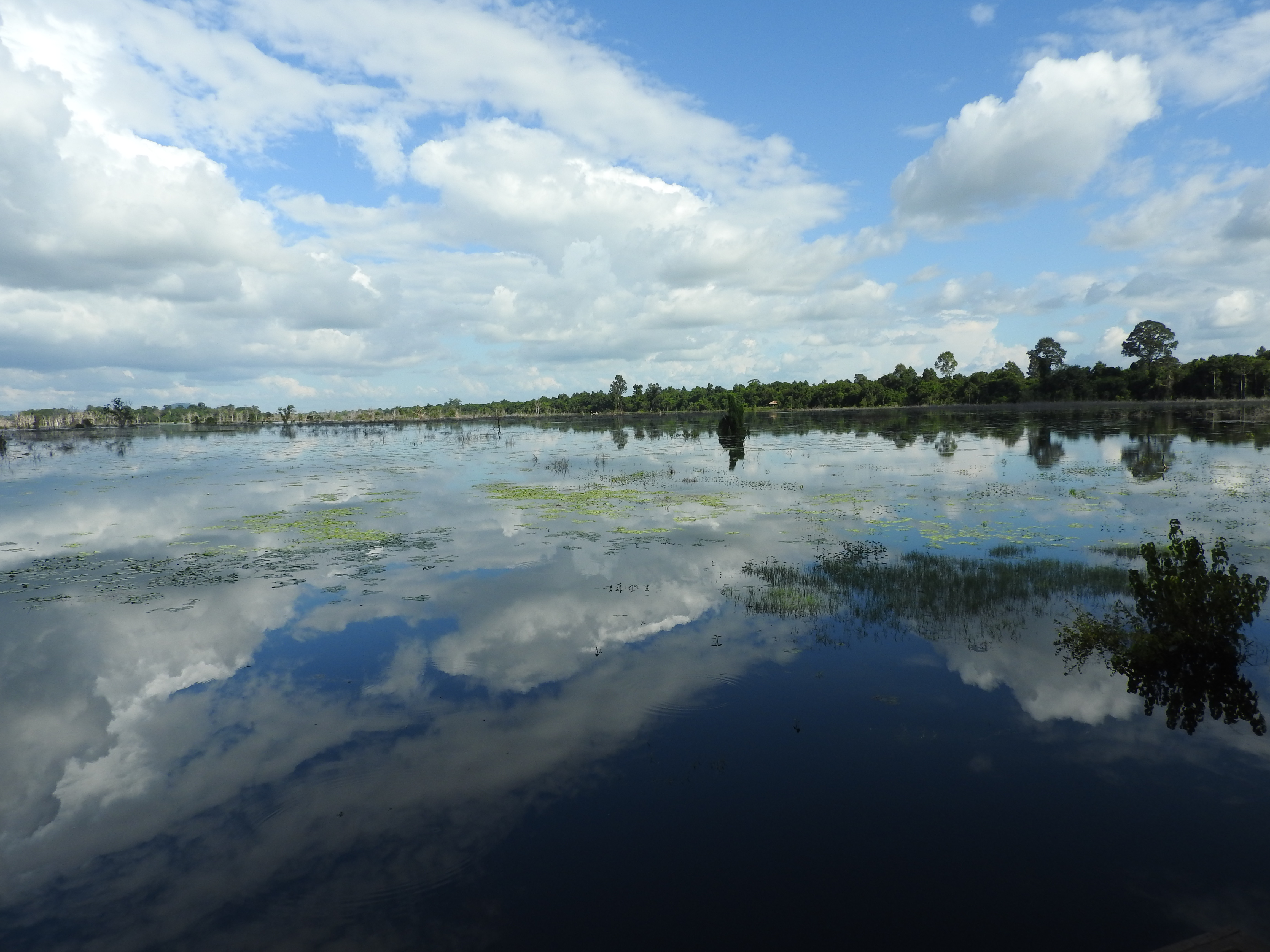 Lake, Siem Reap Province, Cambodia